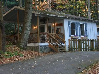 On Babbling Brook - WiFi - Fenced - Gas Fireplace - Brevard vacation rentals