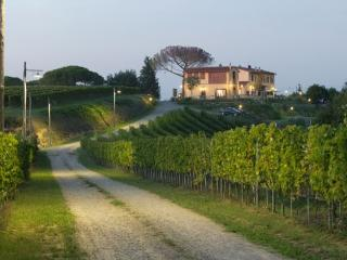 Burraia - Montopoli in Val d'Arno vacation rentals