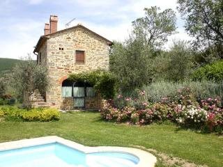Santo Stefano - Castiglion Fiorentino vacation rentals