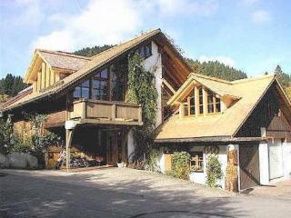 LLAG Luxury Vacation Apartment in Feldberg - 861 sqft, bright, comfortable, friendly (# 4963) - Neuglashutten vacation rentals