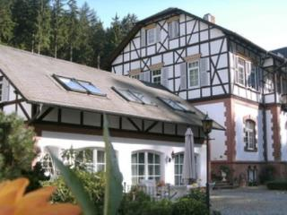 Vacation Apartment in Eisenach - 1076 sqft, exclusive, comfortable, generous. (# 4973) - Thuringia vacation rentals