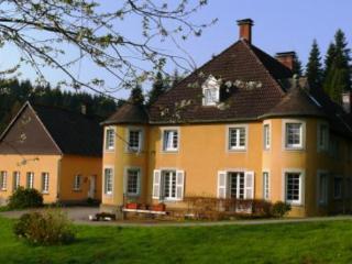 LLAG Luxury Vacation Apartment in Neuenrade - 1722 sqft, exclusive, beautiful, antique (# 4979) - Neuenrade vacation rentals