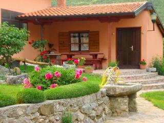 Istrian Museum Apartment in Roč - the smallest town in the world - Pasjak vacation rentals