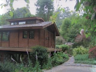 Unique Creekside Home - Point Reyes Station vacation rentals
