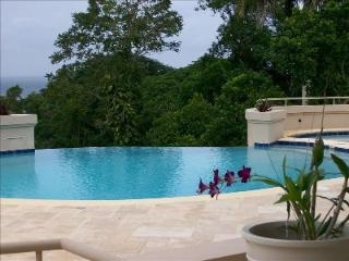 Sensational 5 Bedroom Villa with Ocean View in Montego Bay - Montego Bay vacation rentals