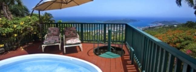 Elegant 2 Bedroom Hillside Mansion on St. Thomas - Image 1 - Saint Thomas - rentals