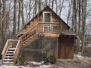 Hunter's Rest Cabin - Stanton vacation rentals