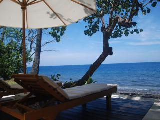 Beachfront private villa / wild beach / SPA / yoga - Tulamben vacation rentals
