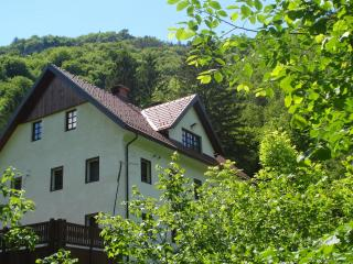 Reka Farmhouse/River house period property **** - Cerkno vacation rentals