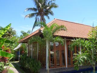 Villa Yvon Bali. - Kaliasem vacation rentals