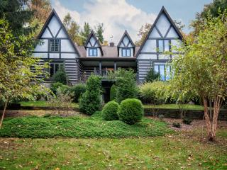 Luxurious Deer Lodge near Brevard and Asheville - Smoky Mountains vacation rentals