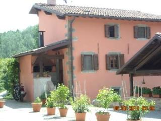 Eco-Friendly Farmhouse with horses P1 - Castiglione Di Garfagnana vacation rentals