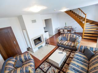 Wili Tatry Apartment Park view - Strelniky vacation rentals