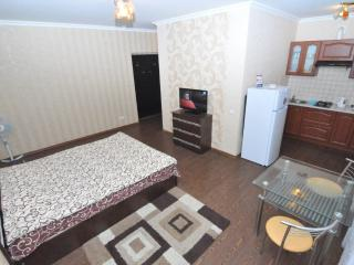 Great apartment near Central Park of Chisinau - Moldova vacation rentals