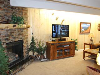 Best Value, Location, Views, Luxury and Convenience Newly Upgraded! - Breckenridge vacation rentals