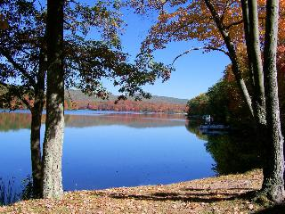 Lake 2 bedrm Condo Quail Hollow Drums Poconos, PA - Drums vacation rentals