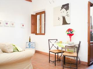 Trastevere heart with little balcony up to 4 pax - Rome vacation rentals
