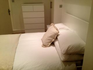 Spacious 2 Bedroom in Belsize Park, London - London vacation rentals