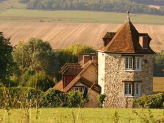 Majestic house in the vineyards - Baulne-en-Brie vacation rentals
