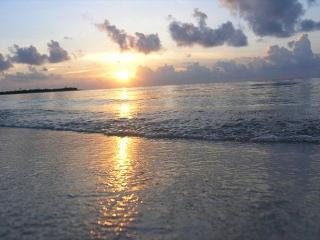 Corazon Zen Palapita, One room Bungalow near Tulum, Soliman Bay, Riviera Maya - Tankah vacation rentals