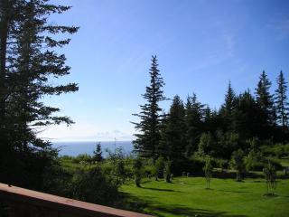 Ocean View Cabin (Douglas Cabin) - Anchor Point vacation rentals