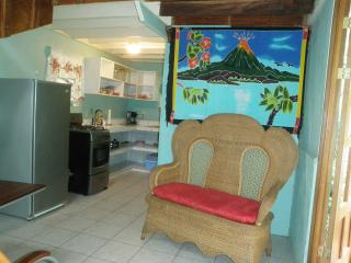 Secluded country cabin with jungle view & WIFI - Atenas vacation rentals