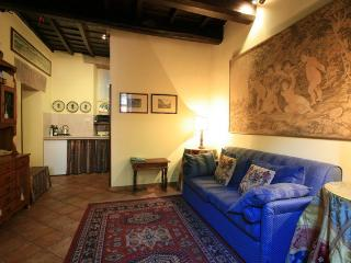 Special apartment near the Colosseum - Rome vacation rentals