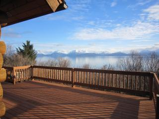 Ocean front, seclusion, Alaskan character - Homer vacation rentals