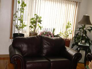 Exquisite and Spacious three bedroom duplex in Montreal - Montreal vacation rentals