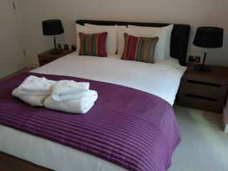Avente Grade Two Bedroom Aapartment #11 - London vacation rentals