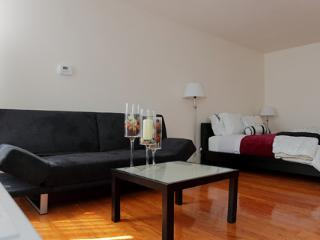 Spacious Studio Boston-Longwood - Brookline vacation rentals