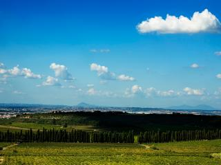 Country house, Frascati - Rome - Lazio vacation rentals