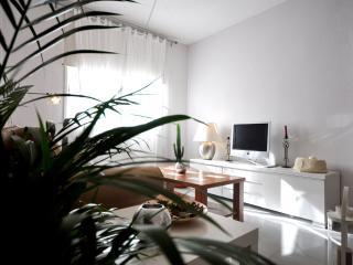 Civil Apartment - Malaga vacation rentals