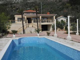 Villa MARIS + swimm pool and ECO vegetable gard - Komarna vacation rentals