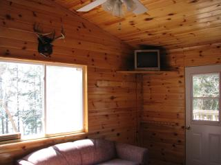 Semi-Outpost Cabin Rentals on Lake Of The Wood's - Nestor Falls vacation rentals