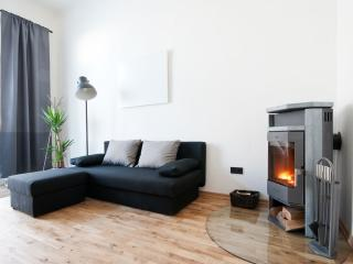 modern city center apartment - Styria vacation rentals