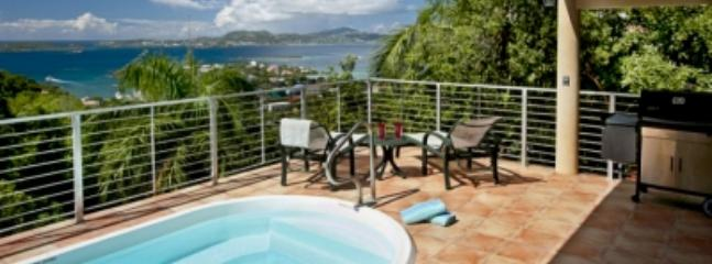 Spacious 2 Bedroom Villa in Cruz Bay - Image 1 - Cruz Bay - rentals