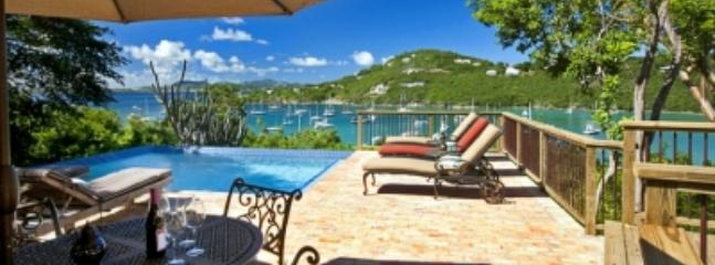 Delightful 2 Bedroom Villa with Private Pool in Cruz Bay - Image 1 - Cruz Bay - rentals