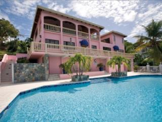 4 Bedroom Villa with Private Pool and View on St. Thomas - Saint Thomas vacation rentals