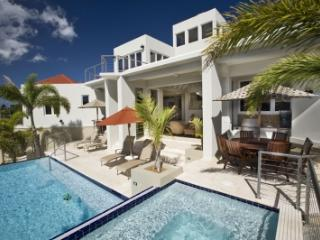 Fabulous 6 Bedroom Villa with View of Great Cruz Bay - Cruz Bay vacation rentals
