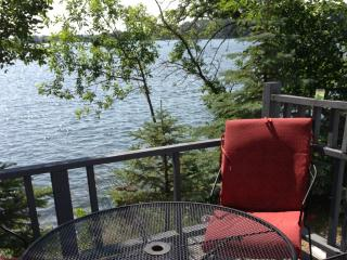 Family Home on 2 Lakes! 335' of Lakeshore. Pontoon - Hoffman vacation rentals