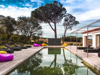 Superb Villa in the vineyards, 6 bedrooms, Saint-Tropez - Saint-Tropez vacation rentals