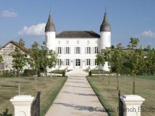 Immaculate Chateau FRMD102 - Aiguillon vacation rentals