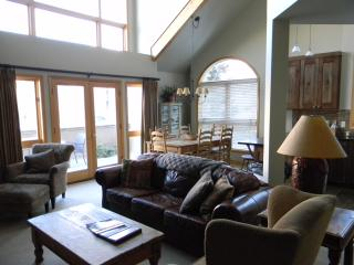 Telluride newly renovated at gondola in mtn vlg - Mountain Village vacation rentals