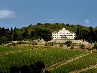 Villa Vistarenni - Radda in Chianti vacation rentals
