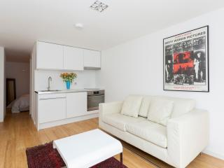 Dulwich Apartment in Charming Area of London - London vacation rentals