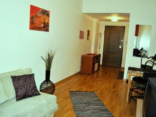 1-bedroom on Main Square 27 - Tallinn vacation rentals
