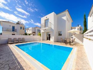 Palm Tree Villa 33 - Sotira vacation rentals