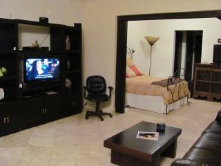 Luxury Condo in Downtown Cabo San Lucas - Colonia Luces en el Mar vacation rentals