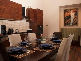 Budapest Art Deco Grand 3 BR Terrace Apartment in the very Centre of the City - Hungary vacation rentals